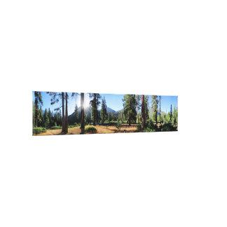 Simpson Meadow - Sierra Canvas Print