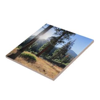 Simpson Meadow - Sierra Ceramic Tile