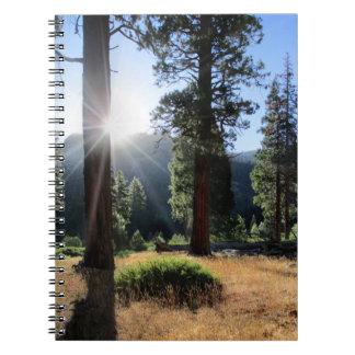 Simpson Meadow - Sierra Notebook