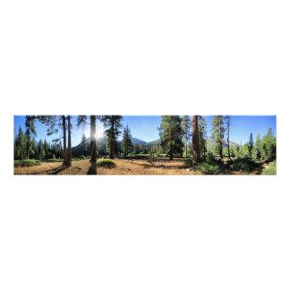 Simpson Meadow - Sierra Photo Print