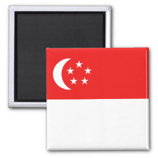 Singapore Flag Magnet