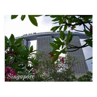 Singapore Gardens Postcard