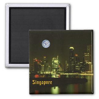 Singapore night lights magnet