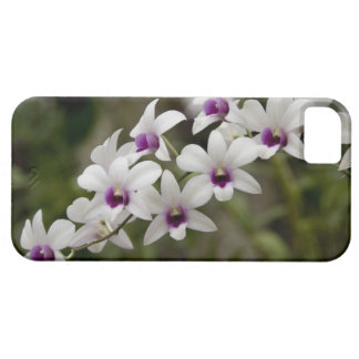 Singapore (Sanskrit for Lion City). National 2 Barely There iPhone 5 Case