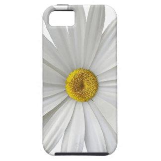 singe iPhone 5 cover