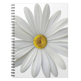 singe notebook