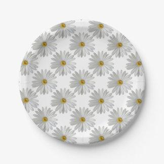 singe paper plate