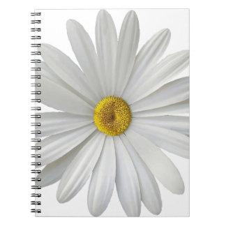 singe spiral notebook