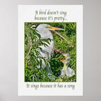 Singing Baby Egret Poster
