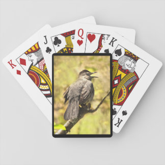 Singing Gray Catbird Playing Cards