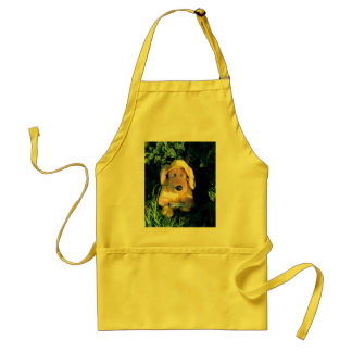 Singing in the rain standard apron