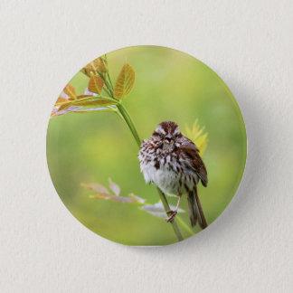 Singing Sparrow 6 Cm Round Badge