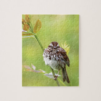 Singing Sparrow Jigsaw Puzzle