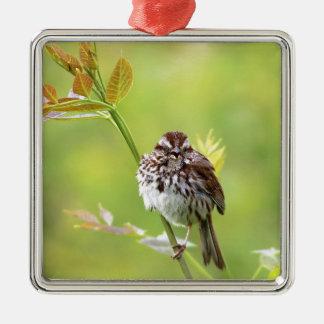 Singing Sparrow Metal Ornament