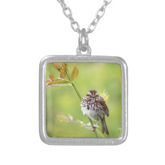 Singing Sparrow Silver Plated Necklace