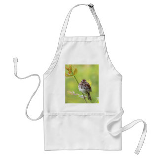 Singing Sparrow Standard Apron