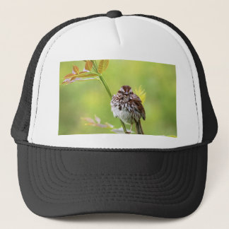 Singing Sparrow Trucker Hat