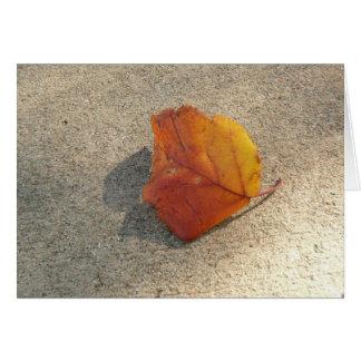 Single Autumn Leaf Note Card