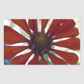Single Bloom Rectangular Sticker