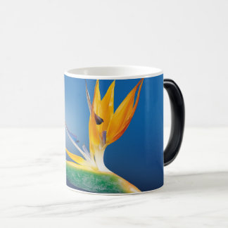 single flower 2 magic mug