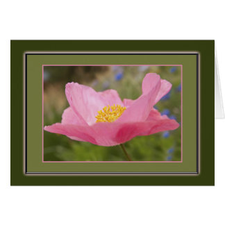 Single Framed Pink Poppy Photograph Greeting Card