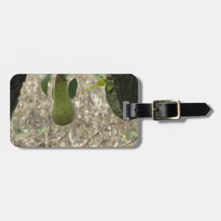 Single green pear hanging on the tree luggage tag