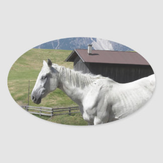 Single horse in an alpine pasture oval sticker