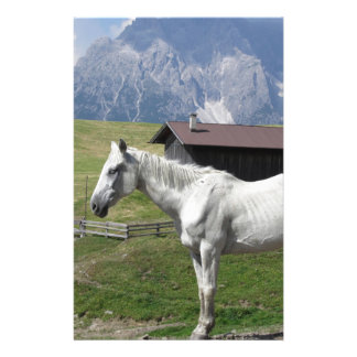 Single horse in an alpine pasture personalised stationery