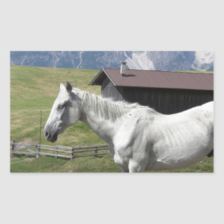 Single horse in an alpine pasture rectangular sticker