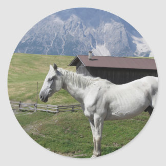 Single horse in an alpine pasture round sticker