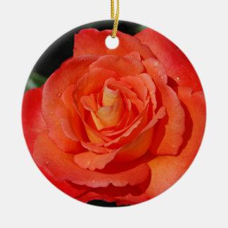 Single orange rose ceramic ornament