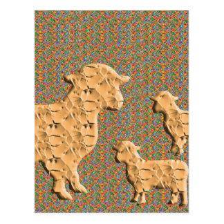 Single Parent SHEEP N baby sheep Postcard