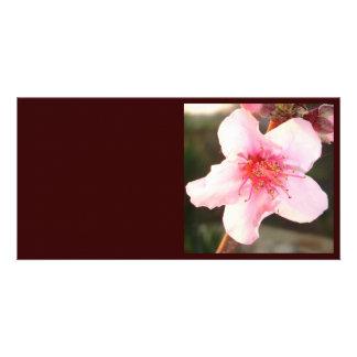 Single Peach Tree Blossom Customised Photo Card