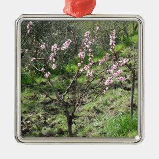 Single peach tree in blossom. Tuscany, Italy Metal Ornament