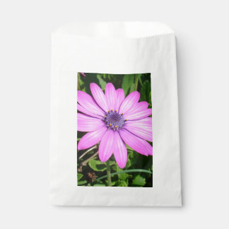 Single Pink African Daisy Against Green Foliage Favour Bag