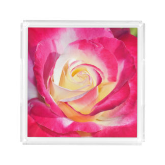 Single pink and white rose acrylic tray