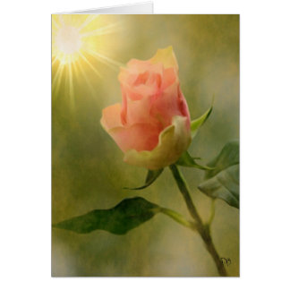 Single Pink Rose Cards
