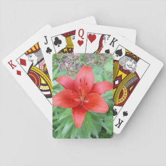 Single Red Flower Playing Cards