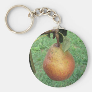 Single red pear hanging on the tree basic round button key ring