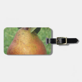 Single red pear hanging on the tree luggage tag