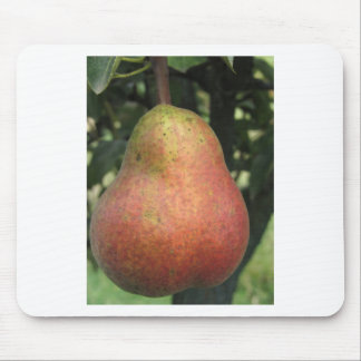 Single red pear hanging on the tree mouse pad