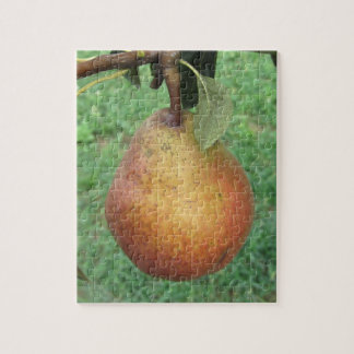 Single red pear hanging on the tree puzzle