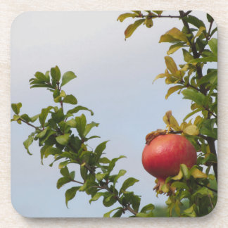 Single red pomegranate fruit on the tree in leaves beverage coasters