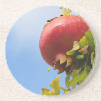 Single red pomegranate fruit on the tree in leaves drink coasters