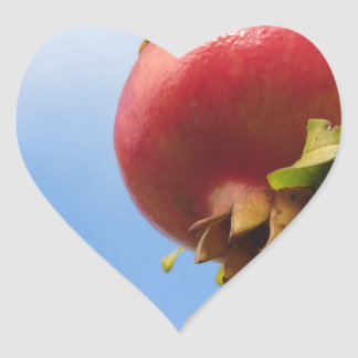 Single red pomegranate fruit on the tree in leaves heart sticker