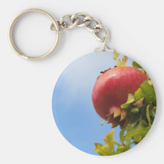 Single red pomegranate fruit on the tree in leaves key ring