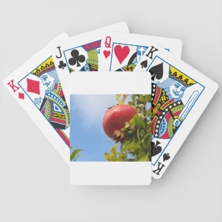 Single red pomegranate fruit on the tree in leaves poker deck