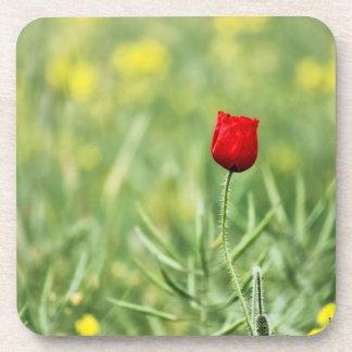 Single Red Poppy Coaster