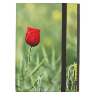 Single Red Poppy iPad Air Cases