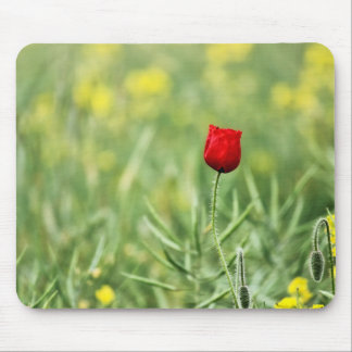 Single Red Poppy Mouse Pad